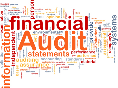 Audit and Assurance in India